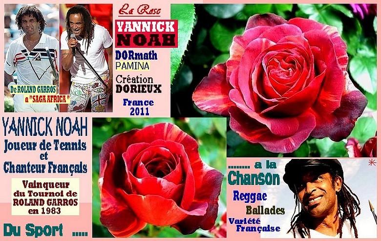 rose-yannick-noah-dormath-pamina-dorieux-2011-celebrites-roses-passion.jpg