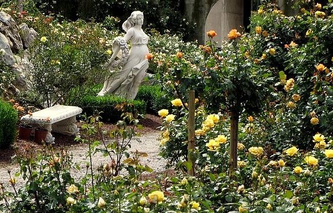 roseraie-de-barbary-5474.jpg
