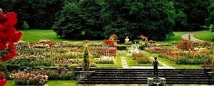 roseraie-du-parc-la-grange-geneve-2.jpg