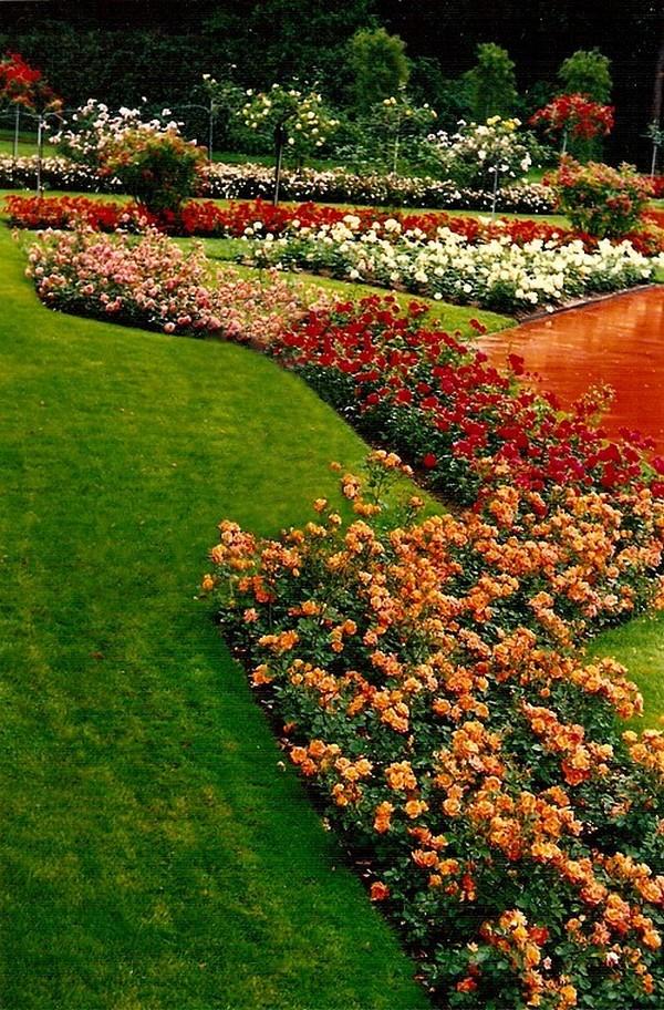 roseraie-du-parc-la-grange-geneve-5-6258.jpg