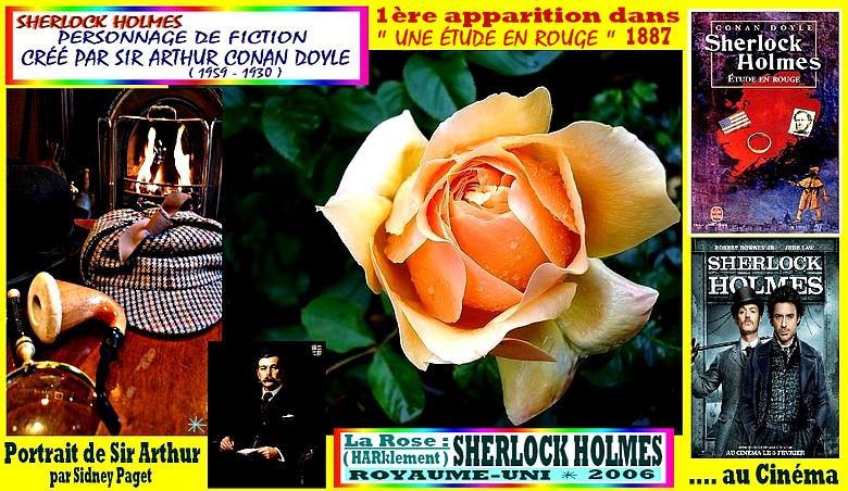 sherlock-holmes-celebrites-rose-02381.jpg