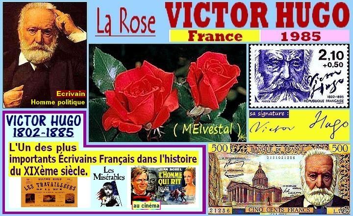 victor-hugo-belle-rose-rouge-celebrites-rosesp.jpg
